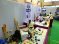 The Stalls at the Hamfest India 2013.